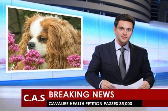 35k news.jpg